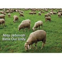 May Jehovah Bless Our Unity.