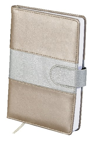 Discontinued My Spiritual Notebook- Gold & Silver (English)