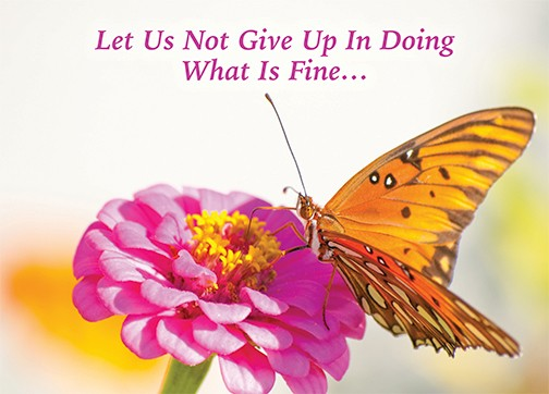 Let us not give up in doing what is fine.