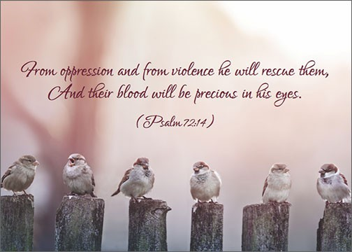 From Oppression Jehovah Will Redeem Us, for We are Precious in His Eyes  Psalm 72:14