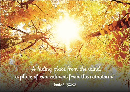 """A Hiding Place from the Wind, A Concealment from the Rainstorm""  Isaiah 32:2"