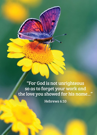 """""""For God is not unrighteous so as to forget your work and the love you showed for his name.."""" Hebrews 6:10"""