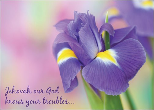 Jehovah our God knows your troubles...