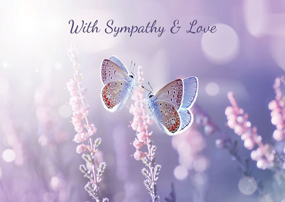 With Sympathy And Love