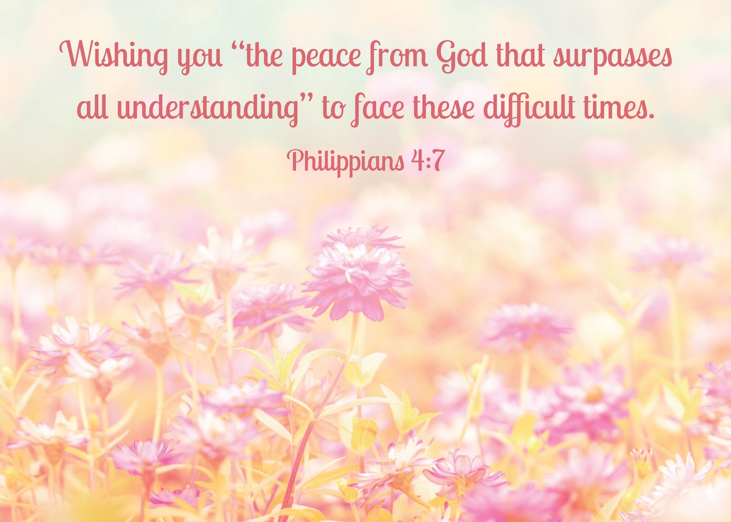 """Wishing you """"the peace from God that surpasses all understanding"""" to face these difficult times. (Philippians 4:7)"""