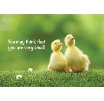 You may think that you are very small
