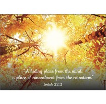 """""""A Hiding Place from the Wind, A Concealment from the Rainstorm""""  Isaiah 32:2"""