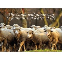 The Lamb will guide you to fountains of water of life