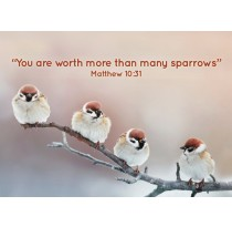 """You are worth more than many sparrows"" Matthew 10:31"