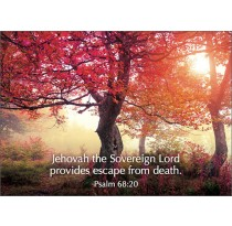 To Jehovah the Sovereign Lord belong the ways out of death